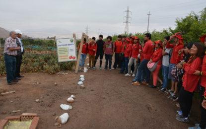 """Capacitan a jóvenes del programa """"mi primera chamba"""" en experiencia agrícola."""