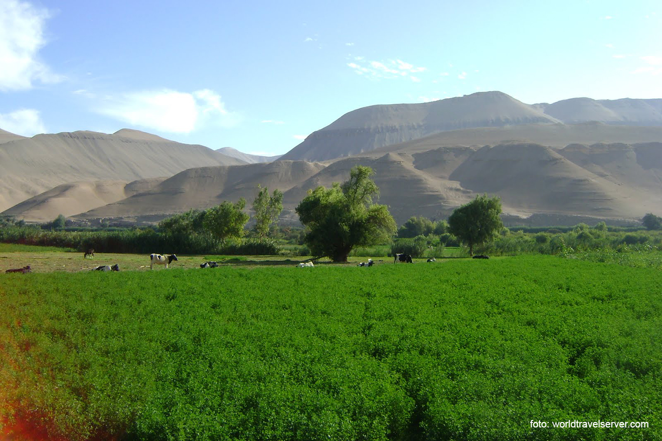 Región Moquegua no podrá suministrar agua a valle de Tambo de Arequipa.